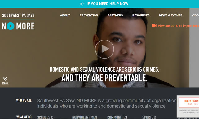 Southwest PA Says NO MORE website screenshot