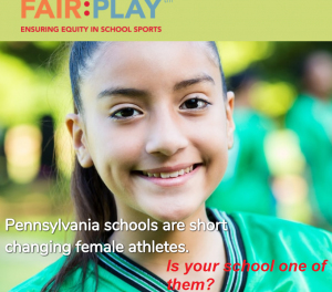 header of FAIR:PLAY website